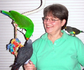 Teaching Parrots to Forage