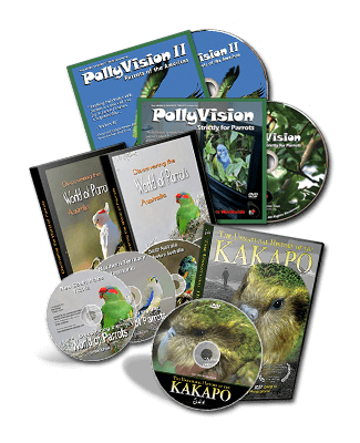 Education and Parrot DVDs