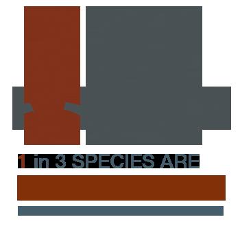 1 in 3 Species