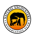 Natural Encounters Conservation Fund