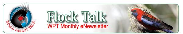Flock Talk, World Parrot Trust eNewsletter