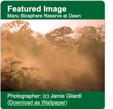 Manu Biosphere Reserve Downloadable Wallpaper