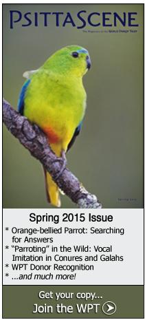 2015 PsittaScene - Spring Issue